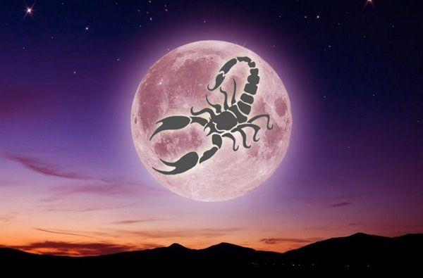 скорпион на фоне огромной луны