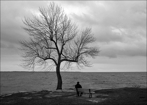 на лавочке сидит мужчина под голым деревом и небом в тучах